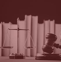 Grilc, Starc & Partnerji Statusno pravo